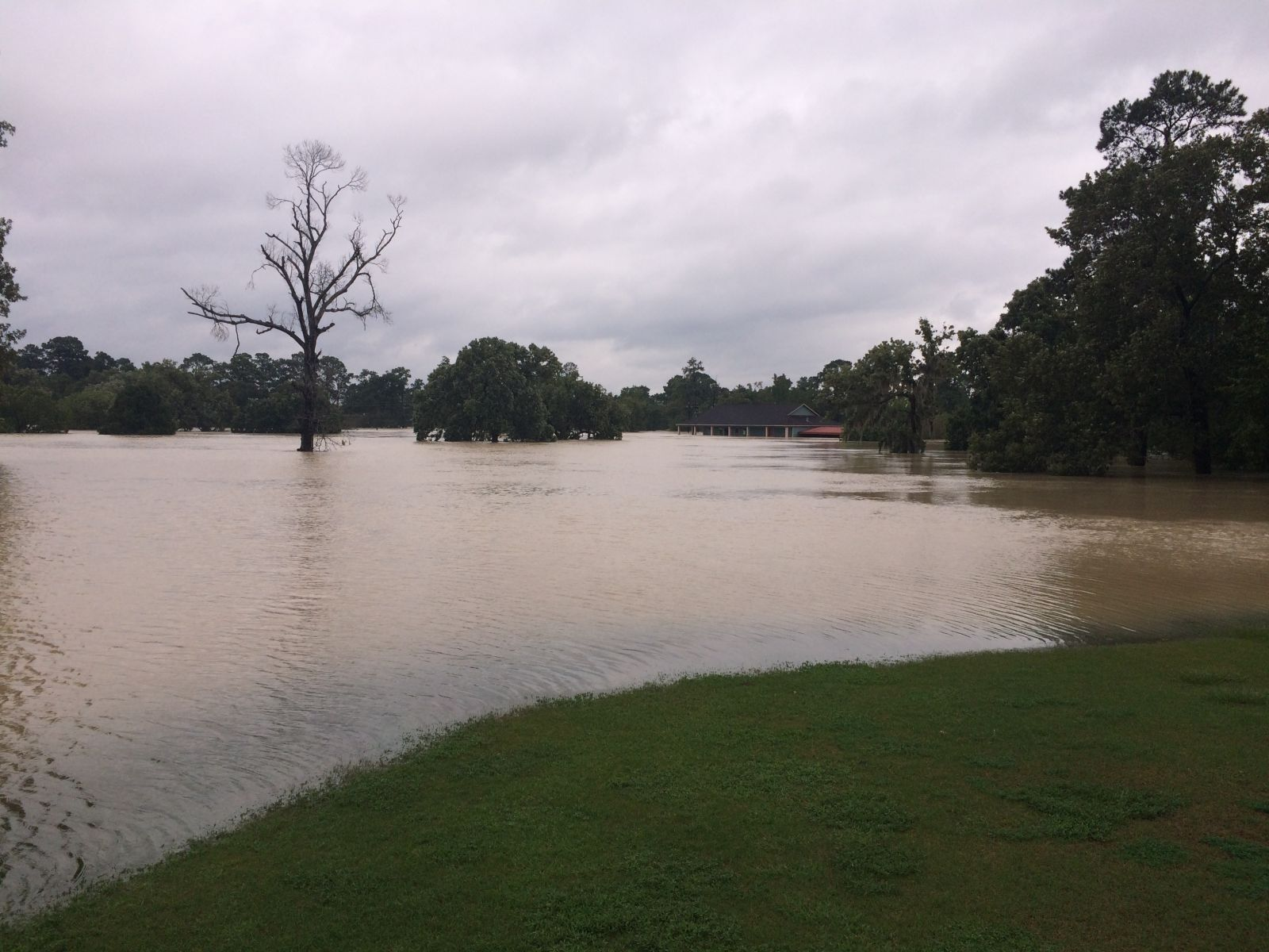 Kingwood Cove Flood